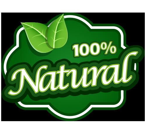 100 logo free transparent png logos 100 logo free transparent png logos