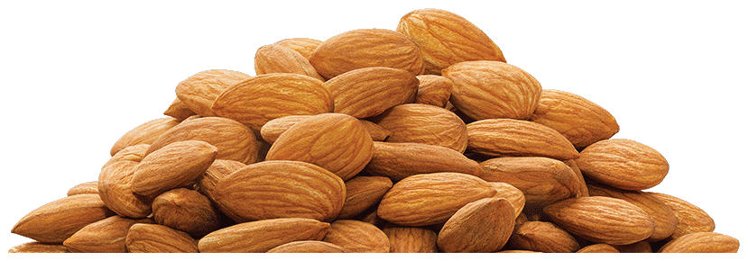 almond png transparent images png only #30290