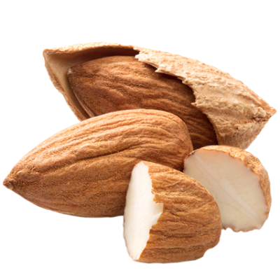 almond png transparent images png only #30343