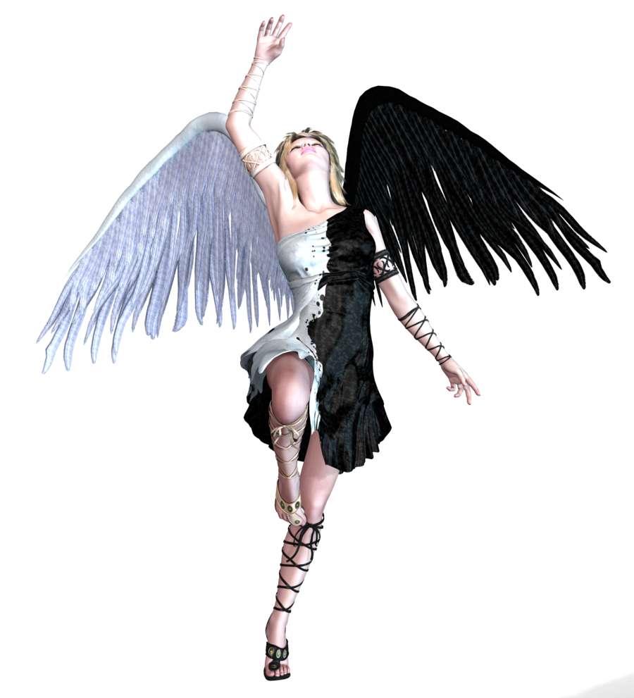 angel blk and white wings png variety deviantart #20555