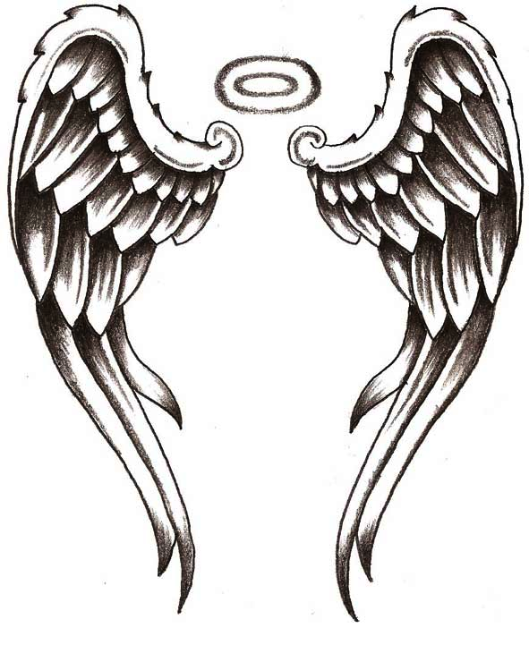 Angel Wings Wings Png Images Transparent Free Download