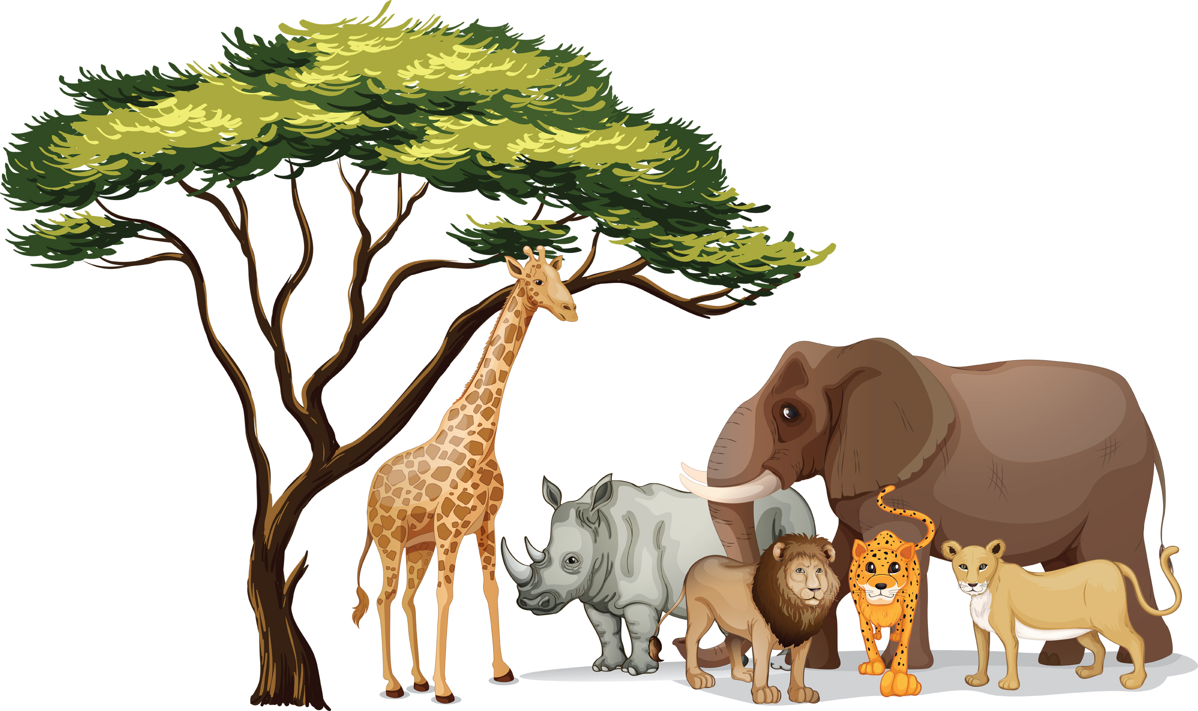 Animals PNG Free Clipart Images - Free Transparent PNG Logos