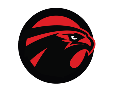 atlanta falcons bird symbols png logo #3839
