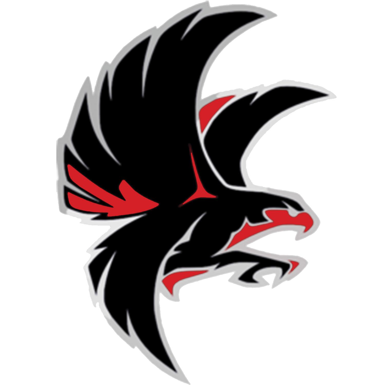falcon school mascot png logo