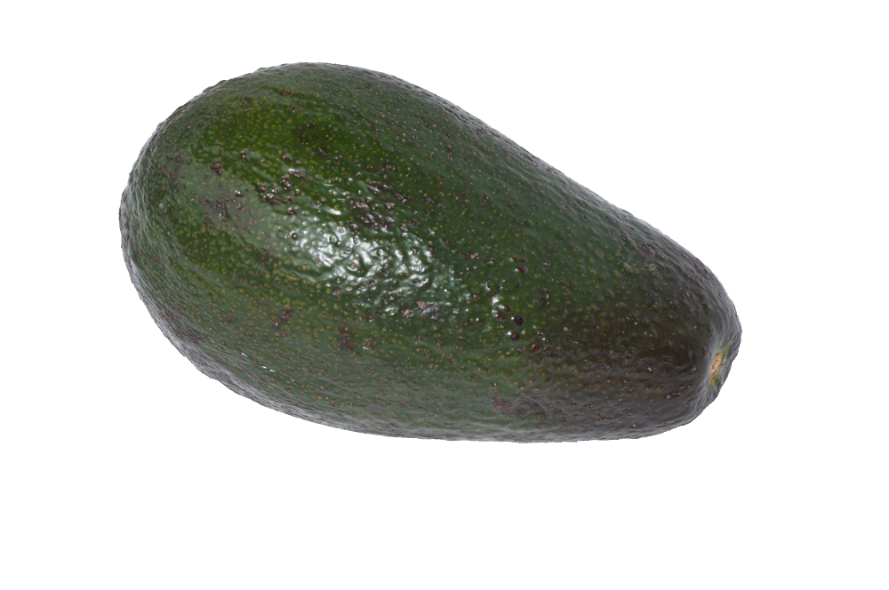 avocado png images with transparent backgrounds #23732