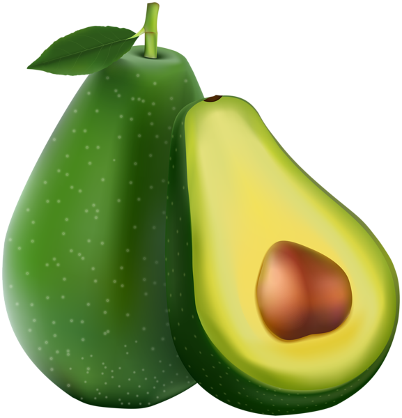 avocado transparent png image gallery yopriceville #23686
