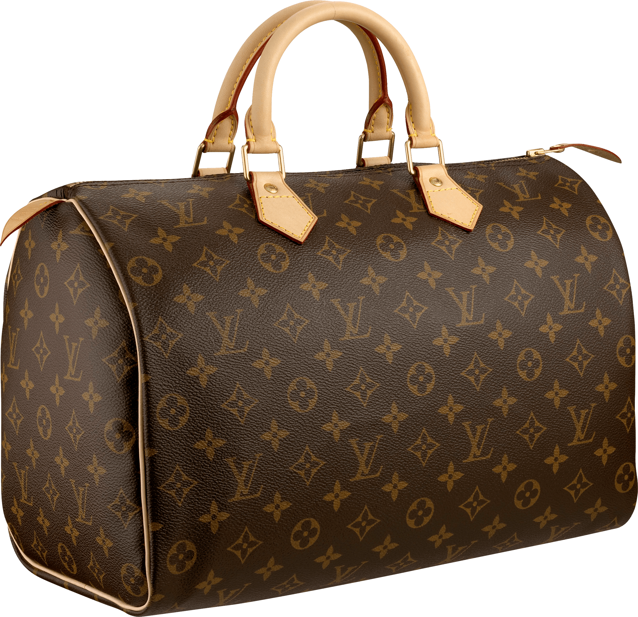 download louis vuitton women bag png image png image #21067