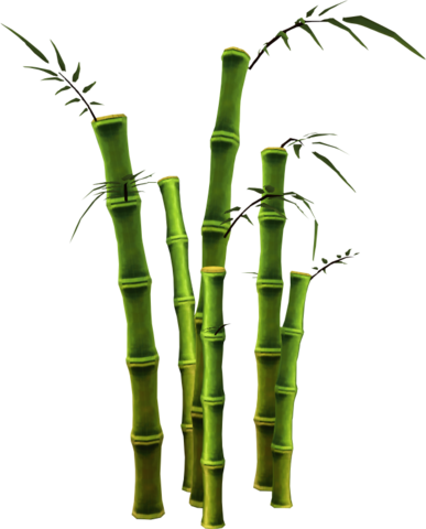 bamboo file png icons and png backgrounds #18287
