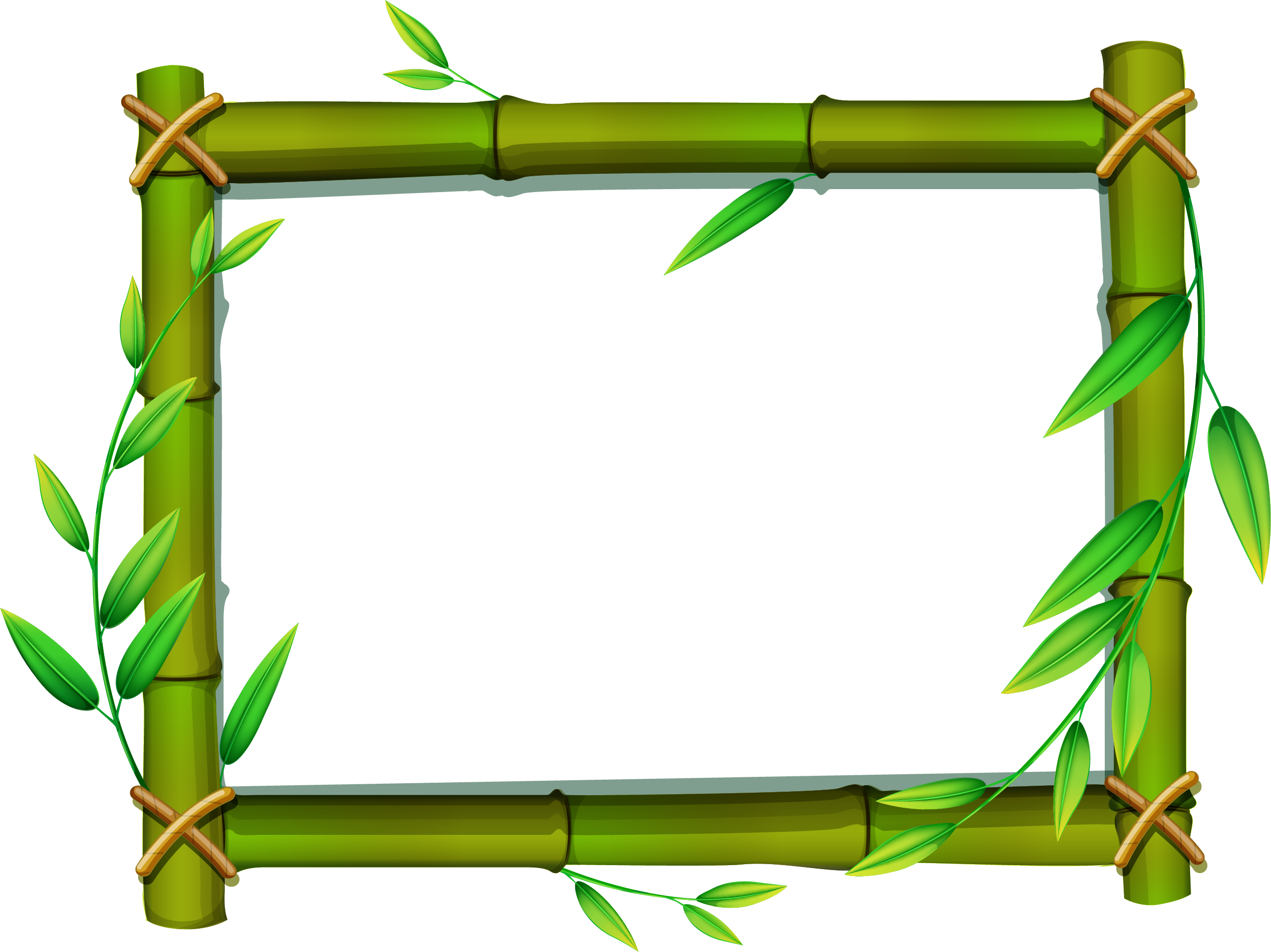 bamboo png transparent images png only #18352