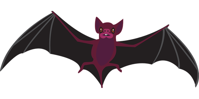 bat night fly vector graphic pixabay #20475