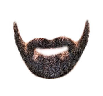 beard transparent png pictures icons and png