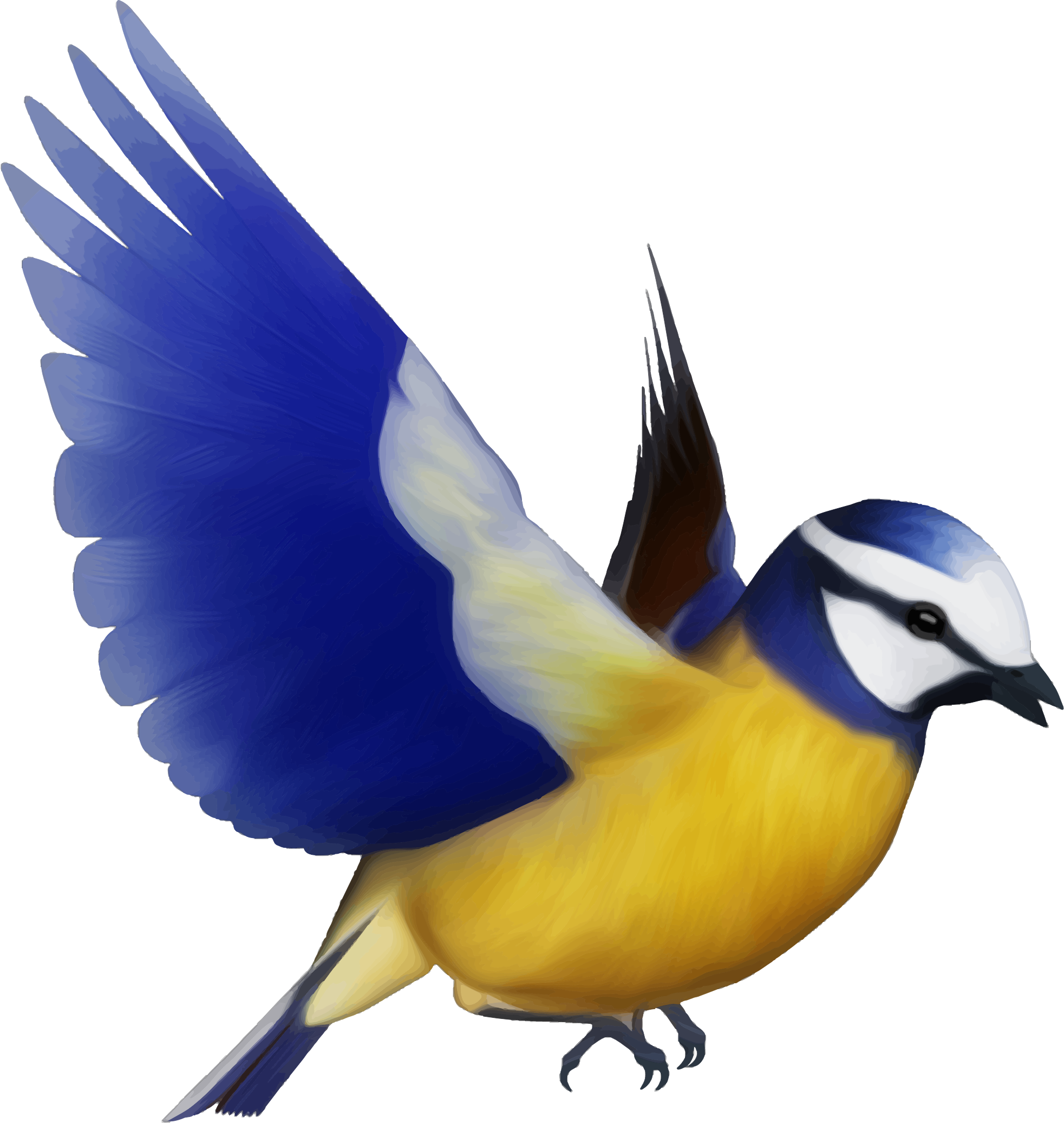 birds png picture web icons png #9549