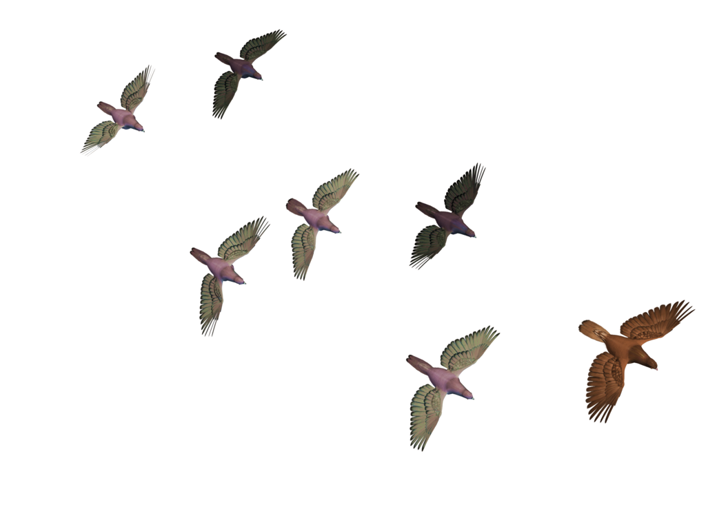 flying birds png roys art deviantart #9540