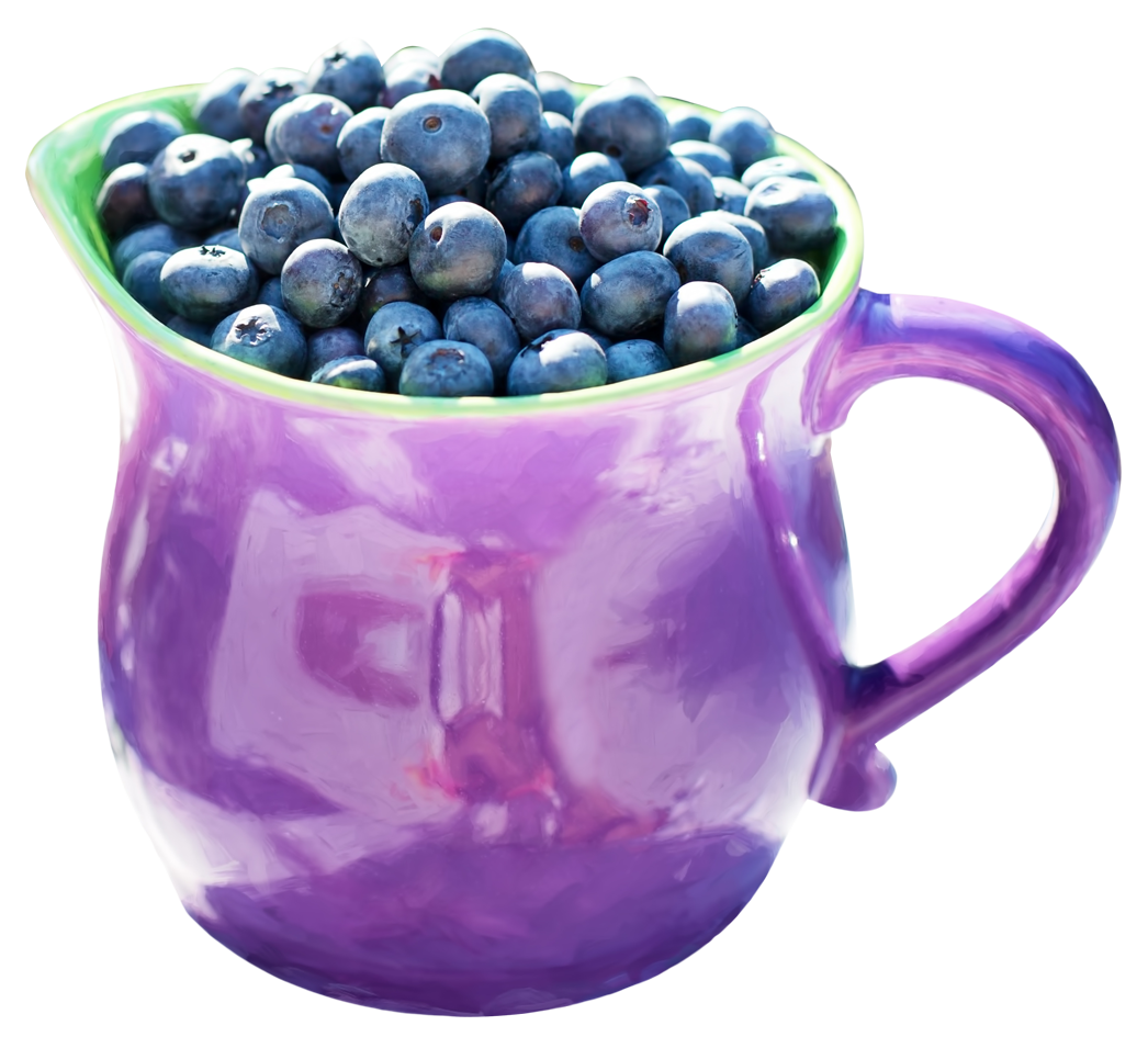 blueberries jug png image pngpix #28888