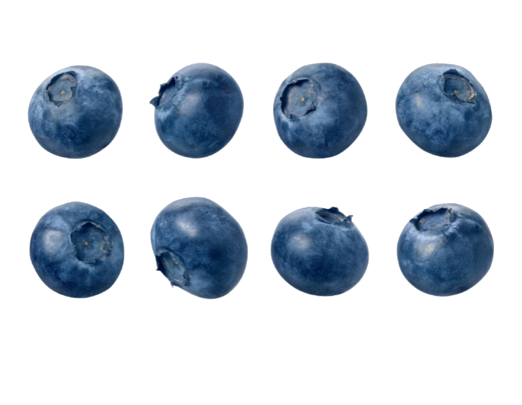 blueberries, transparent blueberry pictures pin pinterest pinsdaddy #28923