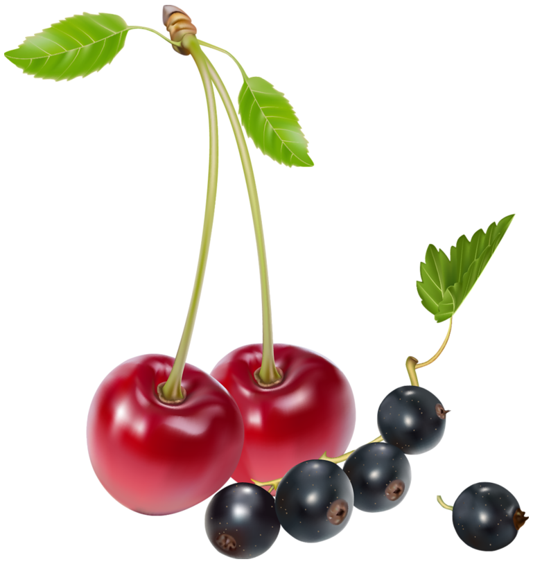 cherries and blueberries png clipart best web clipart #28866