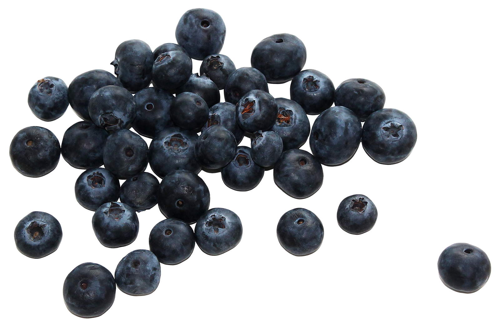 group fresh blueberries png image pngpix #28841