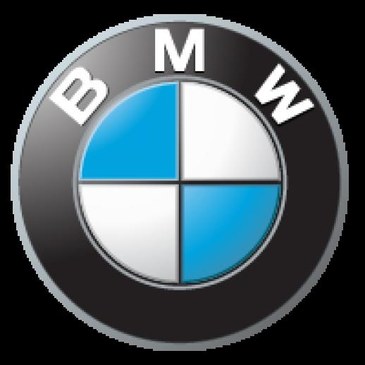 bmw logo #690