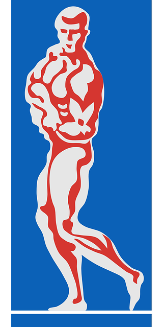 vector graphic bodybuilder body building image pixabay #29107