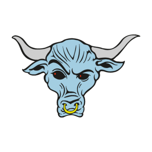 Source The Rock Brahma Bull Wallpaper Labzada Wwe Logo