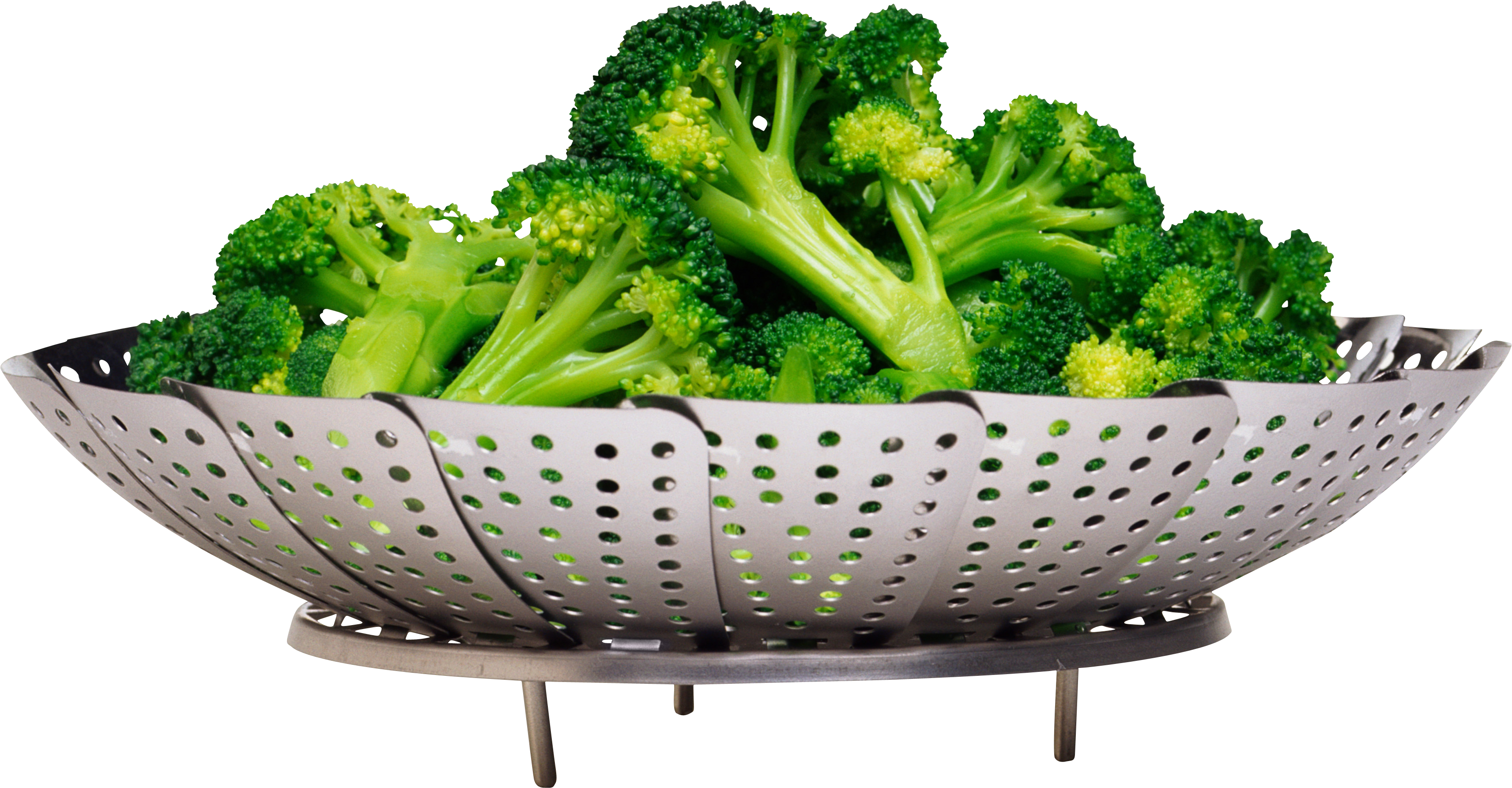 broccoli png image purepng transparent png image library #28735