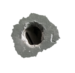 bullet hole, birdiee this wordpressm site the bee knees 21015