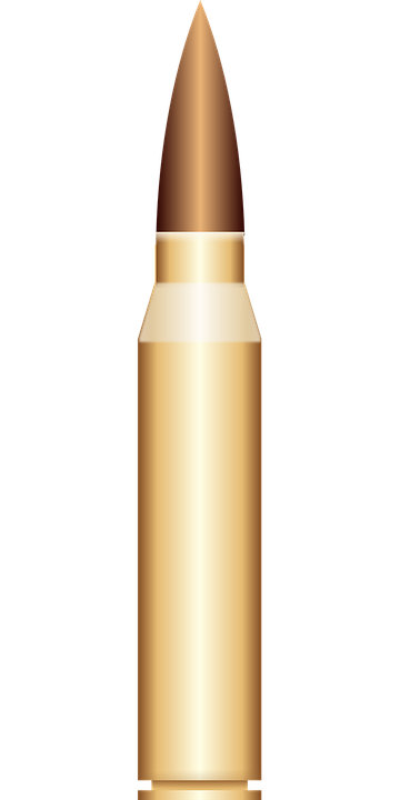 bullet shell cartridge slug #8499