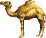 camel, tux paint stamp browser animals #21414