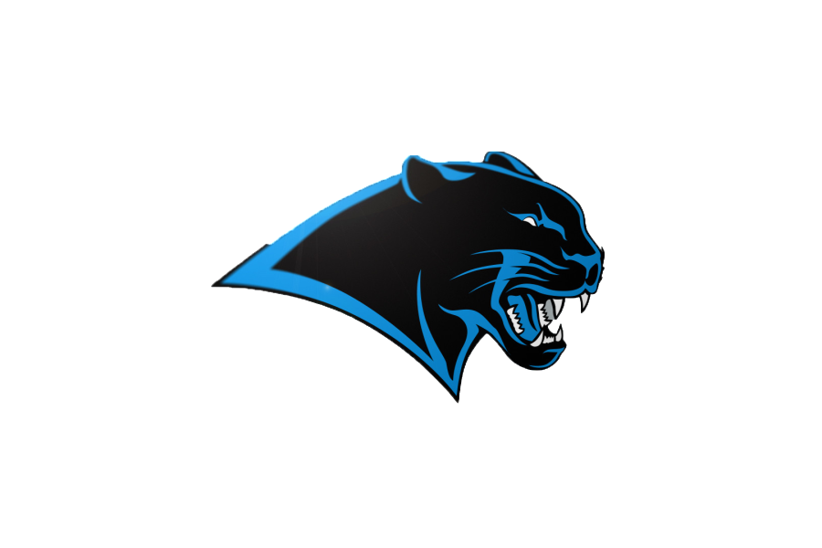 couch rider report, carolina panthers png logo