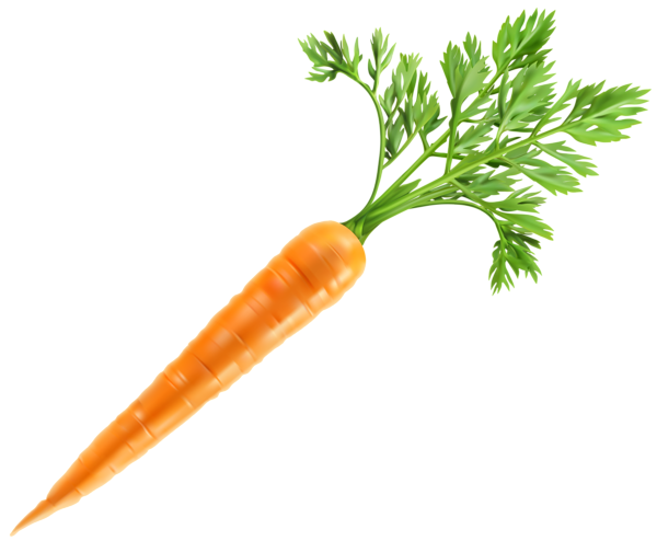 fresh carrot png clip art image gallery yopriceville #17595