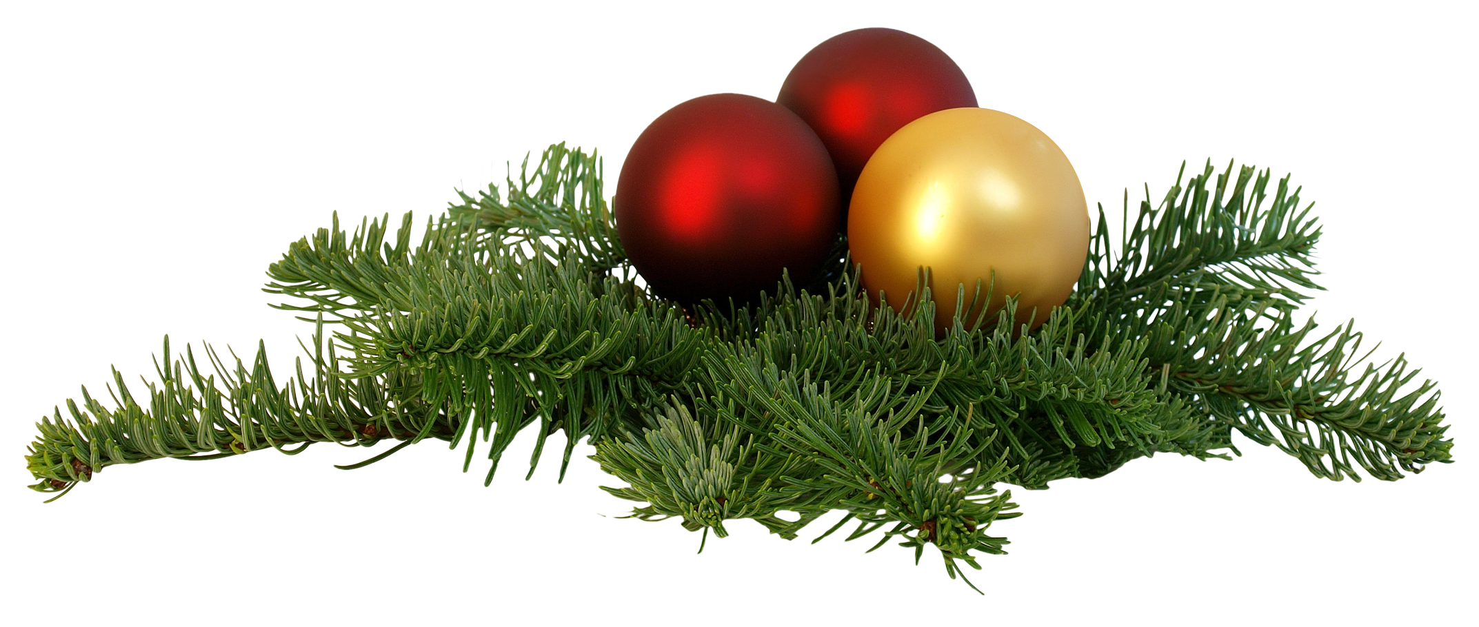 christmas branch png transparent image pngpix #9599