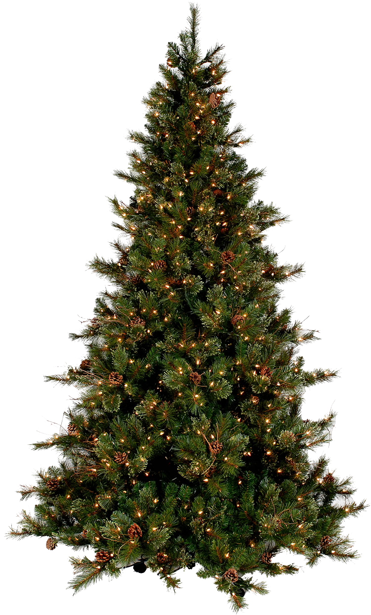 christmas tree png transparent images download 11685