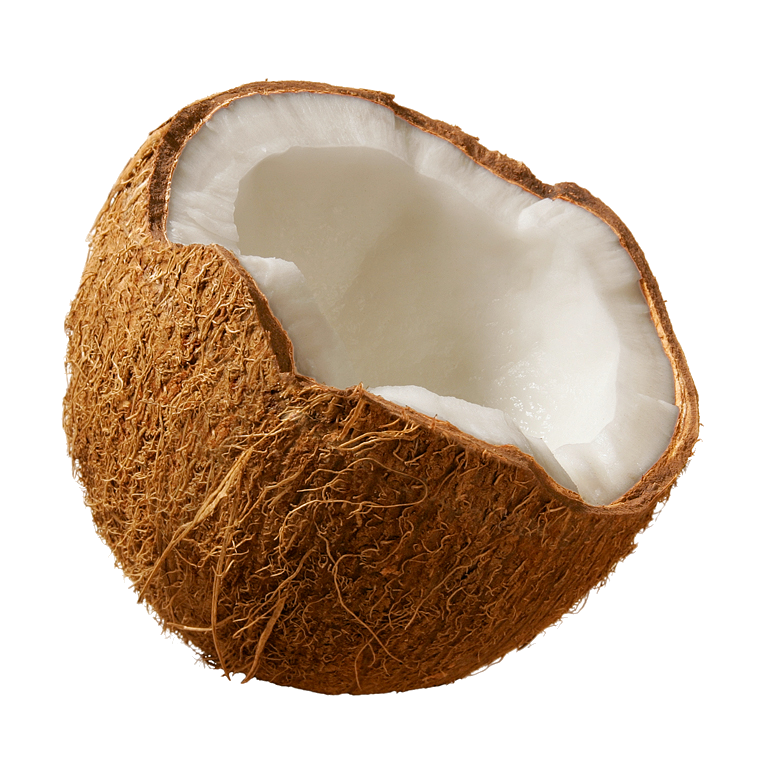 coconut images download #8779