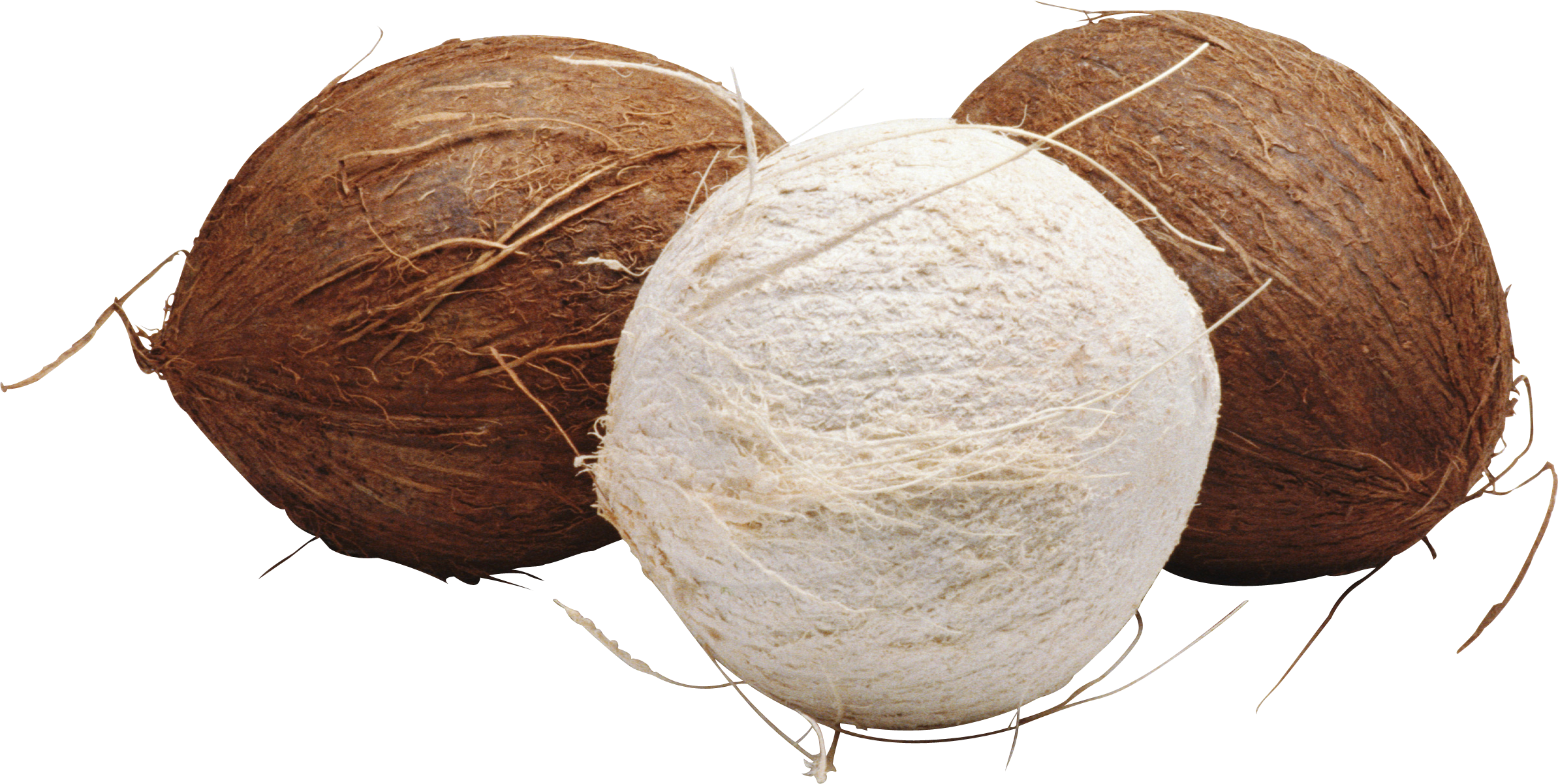 three coconut images, brown, white #8792