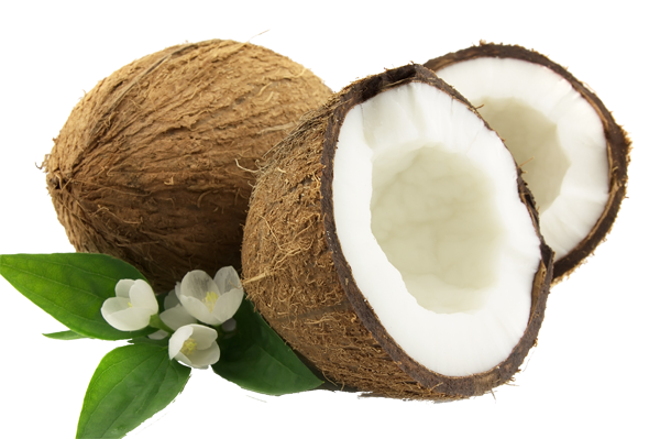 well health embedded coconut itself #8767