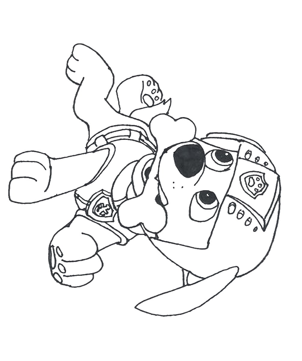 coloring pages of paw patrol raul #2644