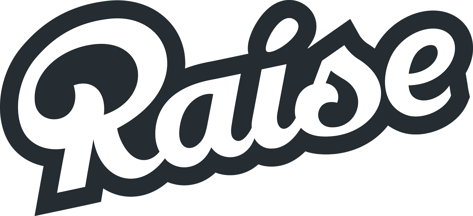 Raise company logo, digital product demo #32513