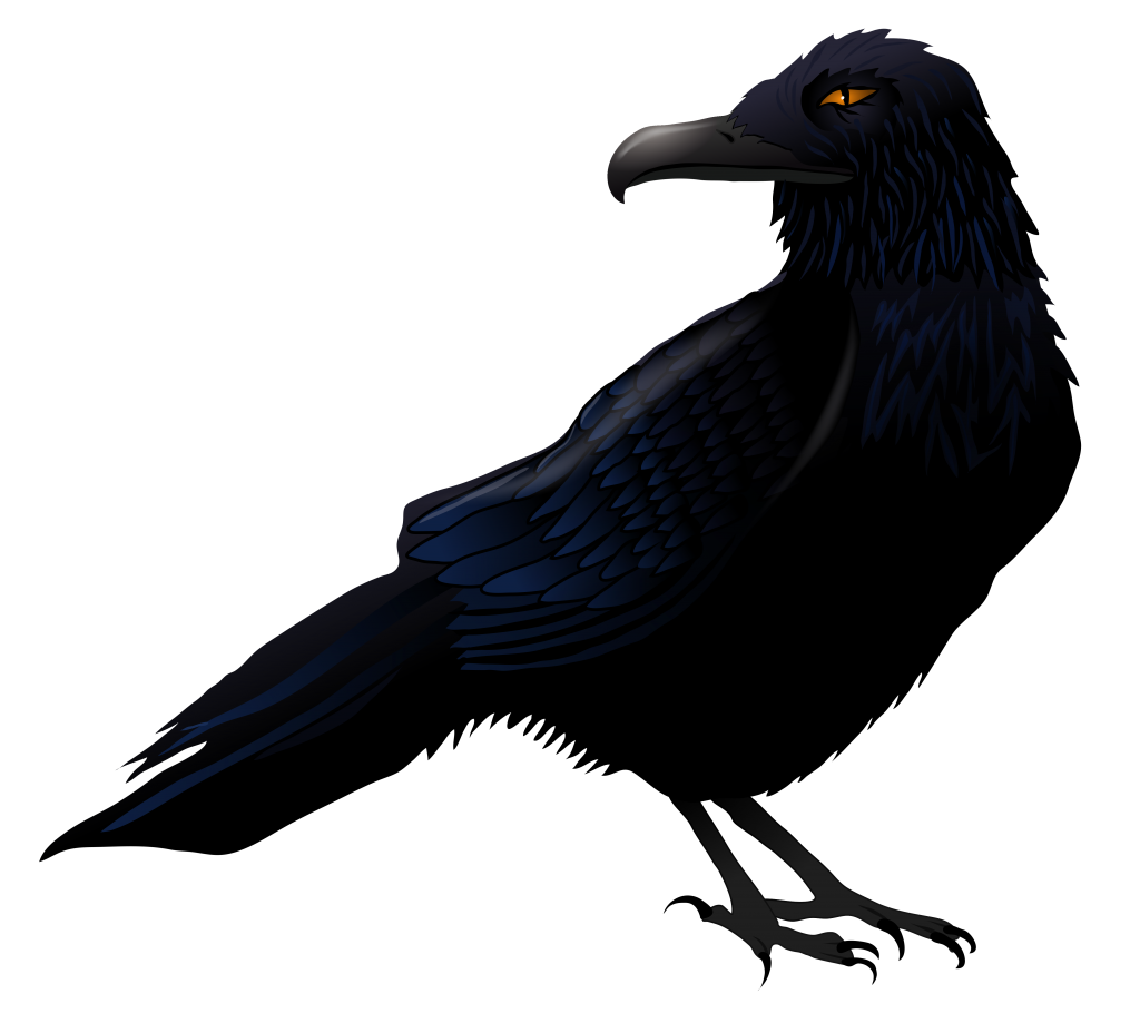 crow png images with transparent backgrounds photos #26994
