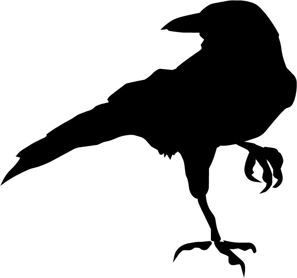 crow silhouette, crow raven blackbird decal quot quot choose color vinyl #27610