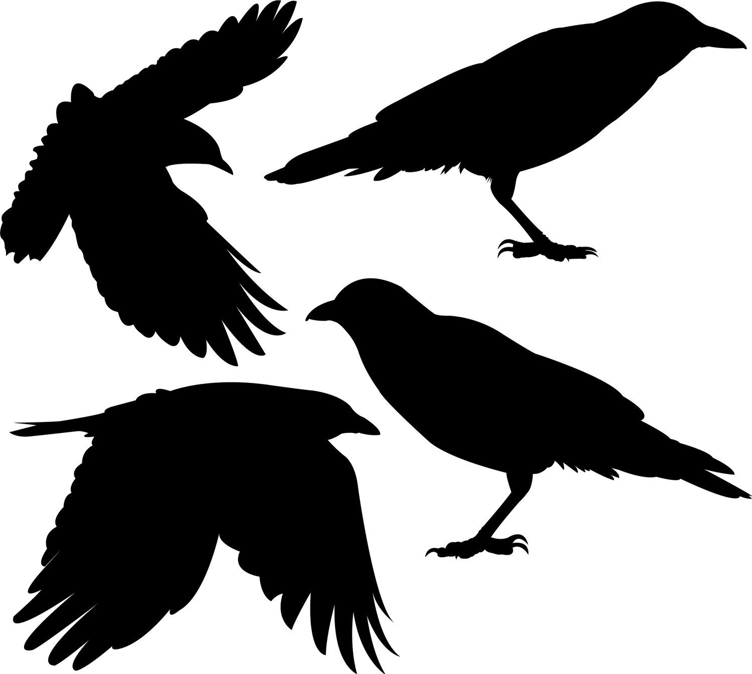 crow silhouette, flock four crows vinyl wall decals wilsongraphics #27618