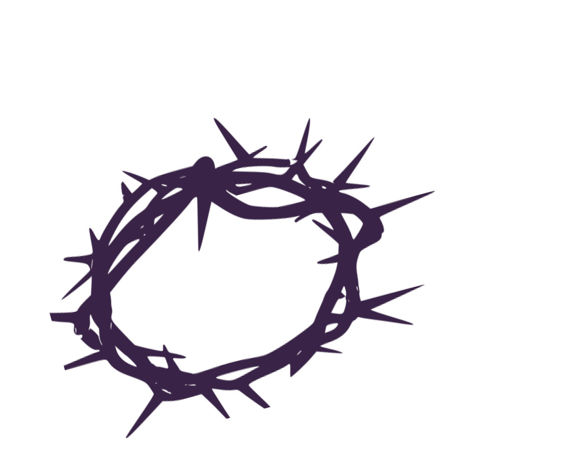 crown of thorns crown thorns website annes limehouse #36036