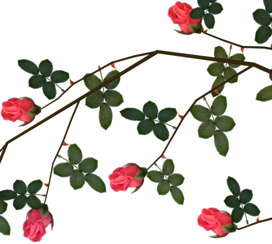 rose thorns clip art graphics #36092
