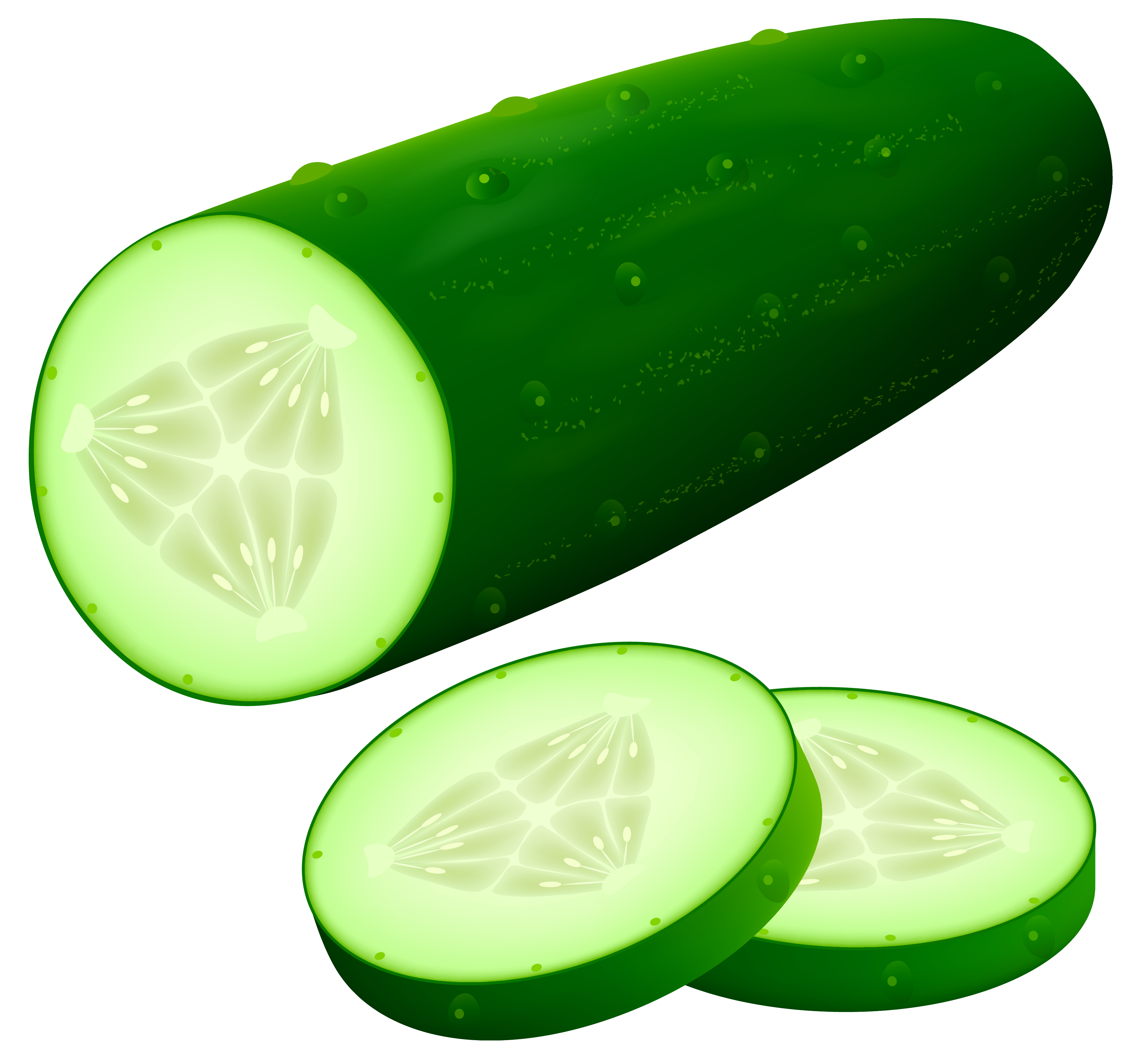 cucumber png clipart image best web clipart #26823