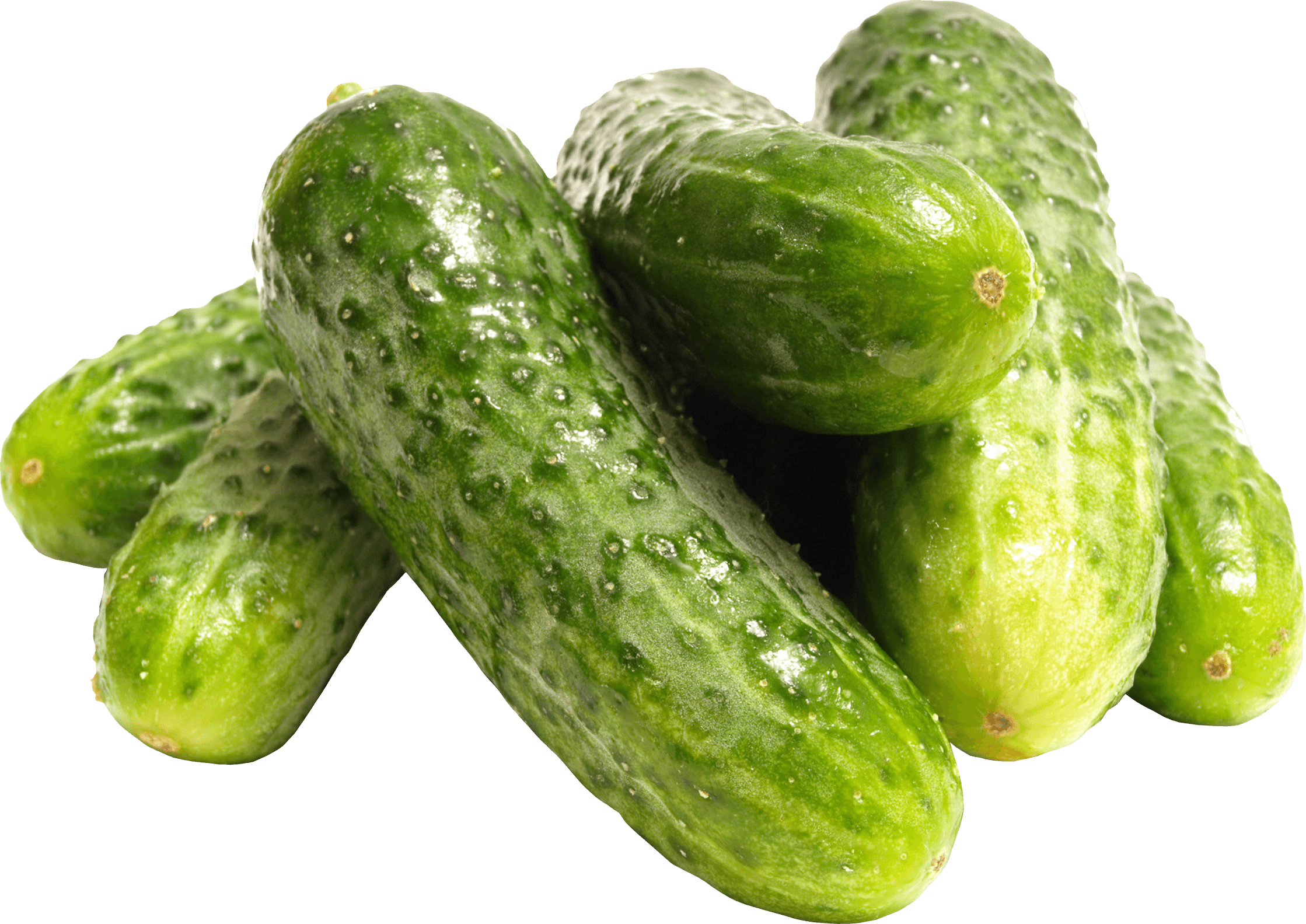 download green cucumber png image png image pngimg #26820