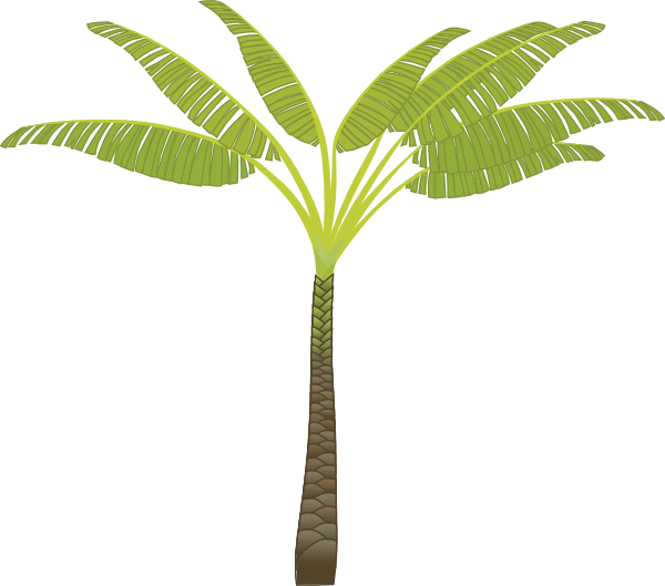 date plant, jungle trees clip art google cool stuff trees #32179