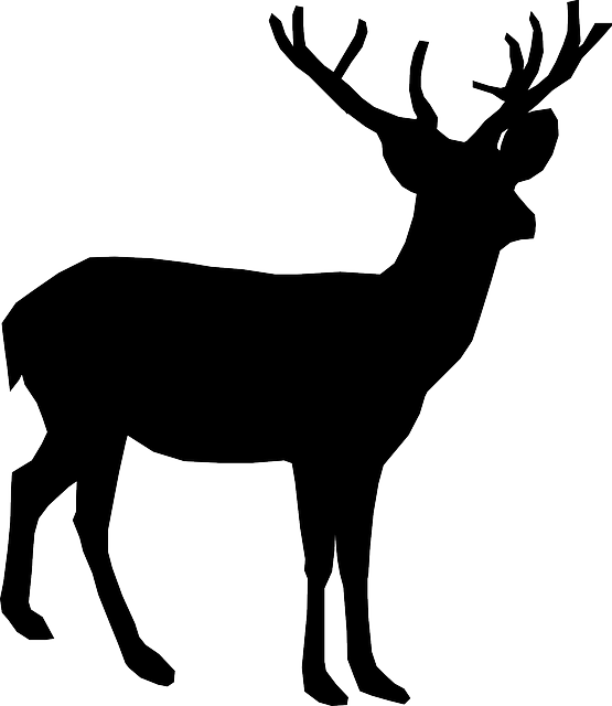 deer animal antler vector graphic pixabay #22316