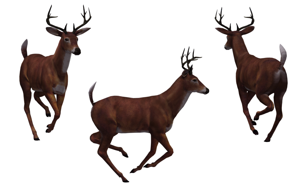 deer png images with transparent background #22306