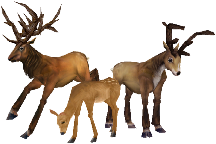 deer wowpedia your wiki guide the world warcraft #22301
