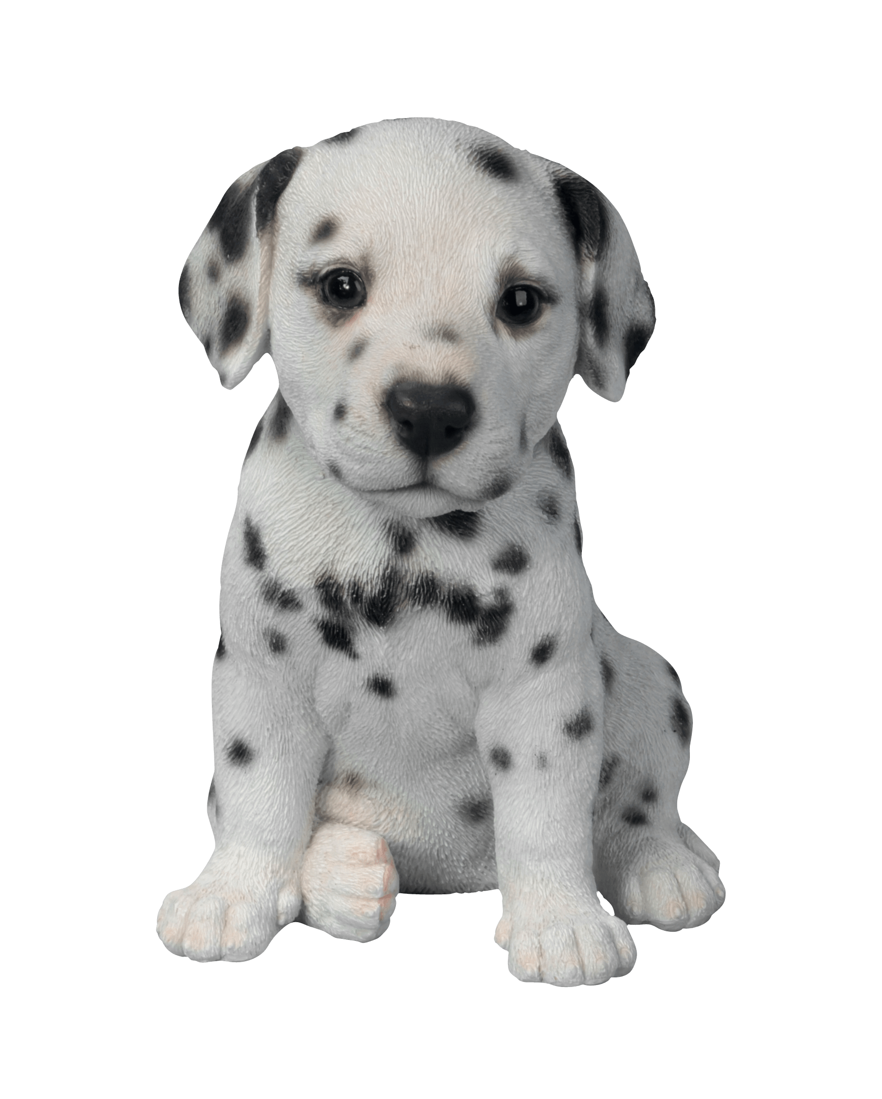 black and white dog png image transparent png #11384