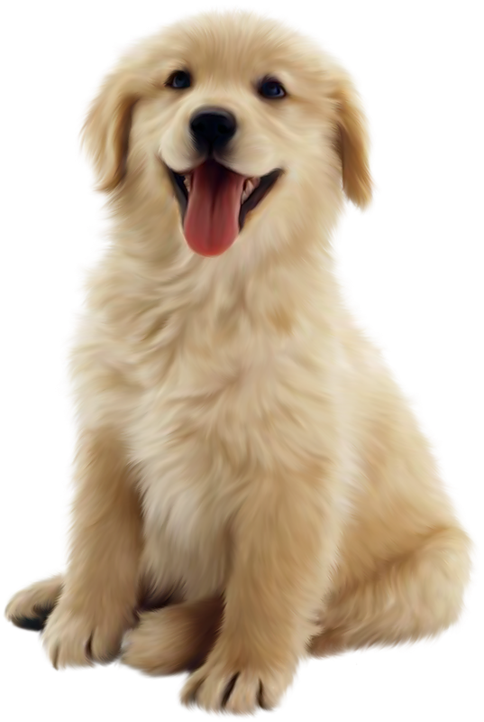 png puppy dog transparent puppy dog images pluspng #11416